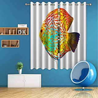 ALUONI Discus Digital Art Print Polyester Window Curtains,Discus for Aquarium Saltwater Fish for Bedroom,59 in Wide x 72 in high