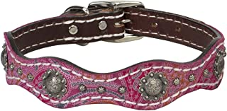 antique dog collars vintage