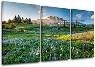 TUMOVO Native American Decor Mount Rainier National Park Paintings 3 Piece Canvas Wall Art Wildflowers at Sunset Pictures Modern Artwork Home Decora for Living Room Framed Ready to Hang(24''x36'')
