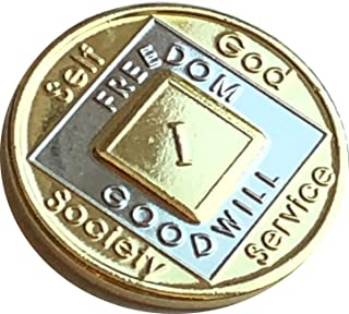 Recovery Mint 1-45 Year NA Medallion Bi-Plate Gold and Nickel Plated Official Narcotics Anonymous Chip