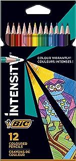 Bic triangulaire de crayons de couleur Color Up, Etui Carton de 12couleurs assorties 12st