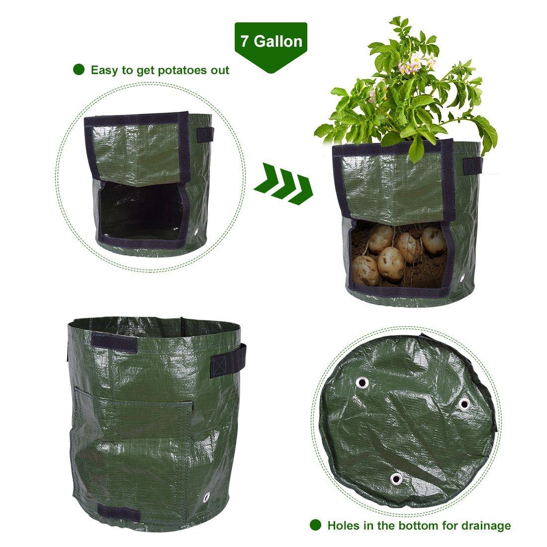 Verduras maceta cubo de bolsas con asas y con solapa de acceso ...