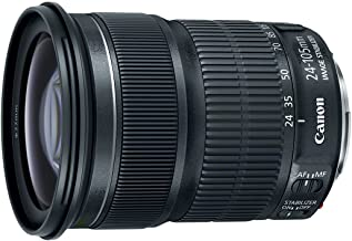 Canon EF 24-105mm f/3.5-5.6 IS STM Lens, 9521B002