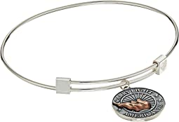 Alex and Ani - Liberty Copper Carry Light™ Bangle