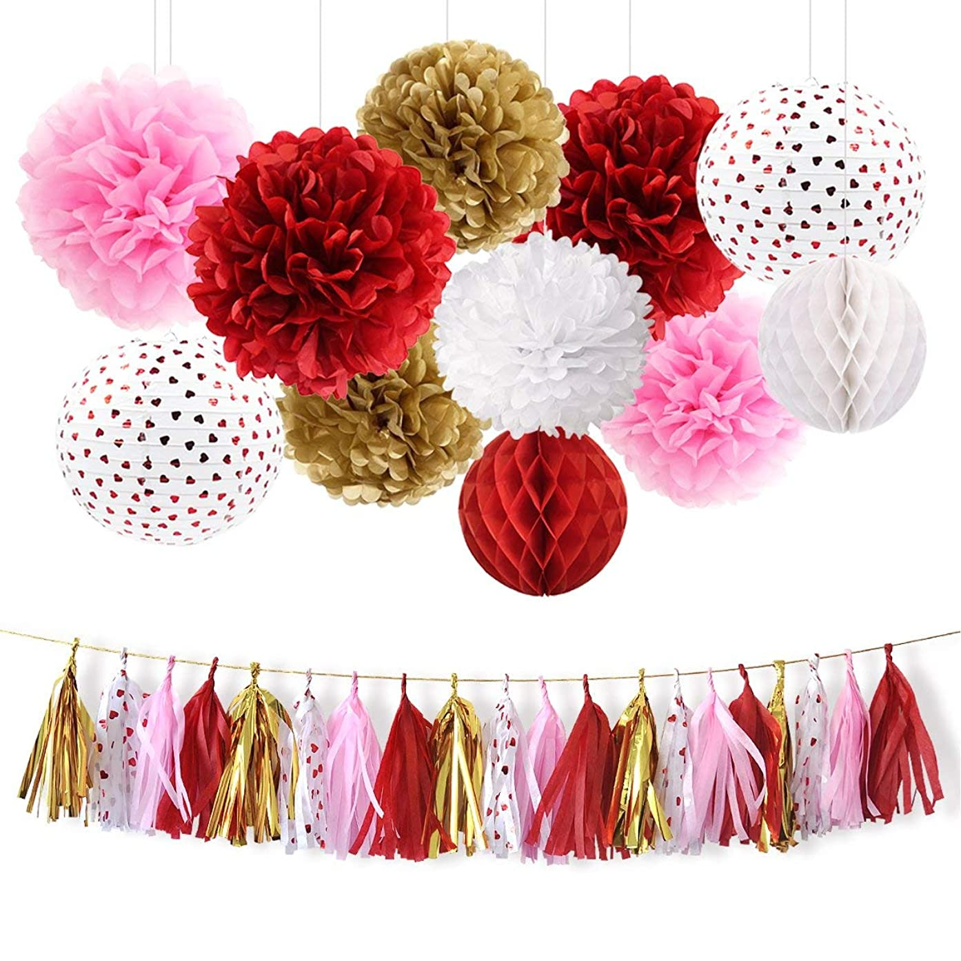 NICROLANDEE Red and Pink Party Decoration Kit Tissue Pom Poms Flowers Romance Red Heart Foil Paper Lantern String Party Tassel Garland for Mother's Day Wedding Bridal Shower Baby Shower Women Birthday