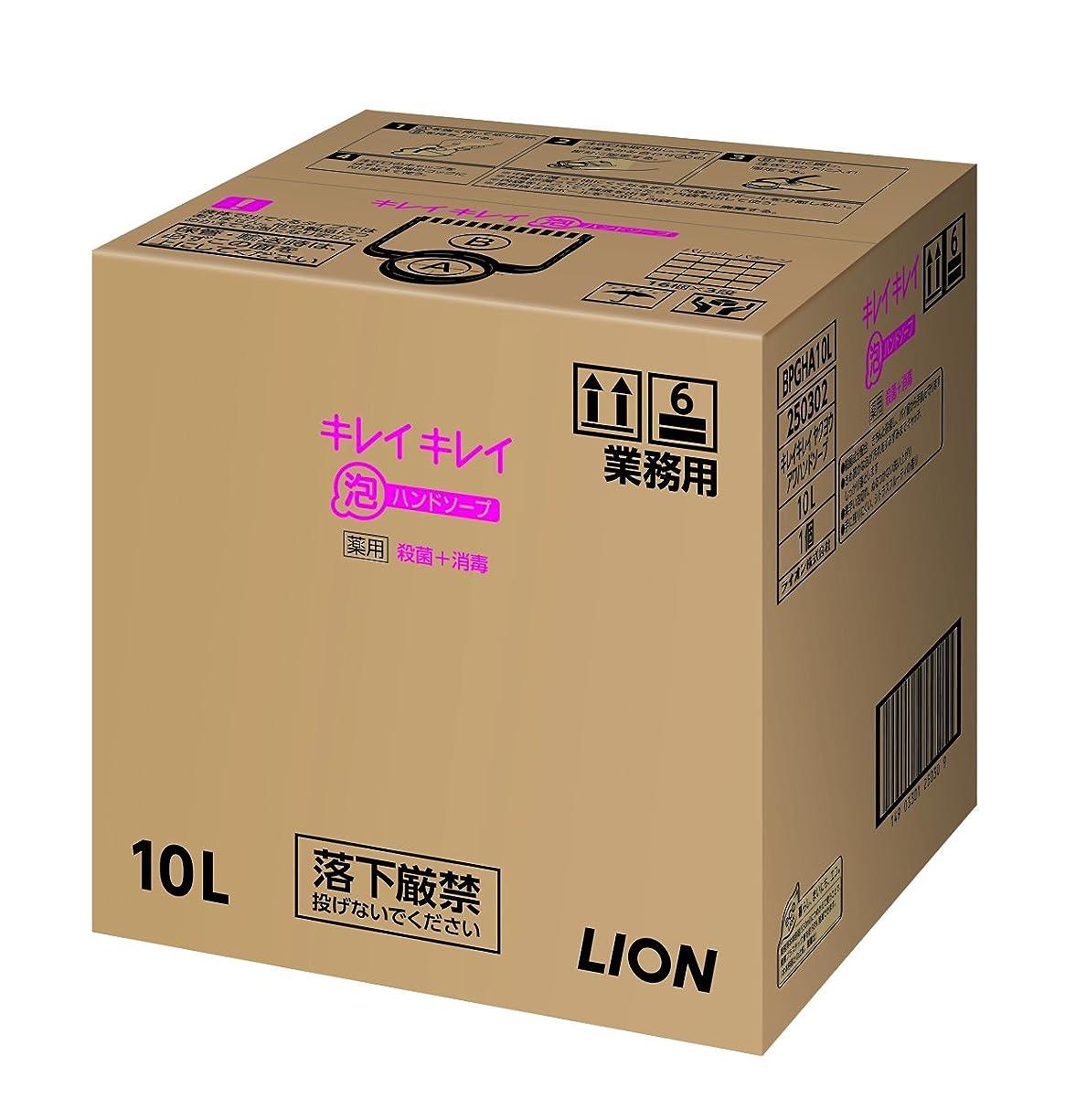 を通して母音藤色【業務用 大容量】キレイキレイ 薬用 泡ハンドソープ シトラスフルーティの香り 10L(医薬部外品)