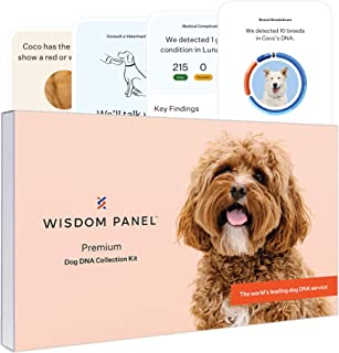 Wisdom Panel Premium, New and Improved Dog DNA Test for Comprehensive Health, Traits and Ancestry