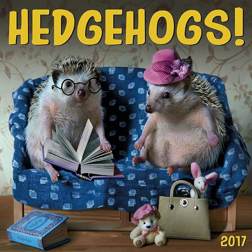 大邸宅ストラトフォードオンエイボンラベンダーCal 2017 Hedgehogs