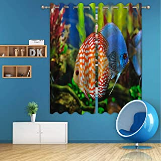 ALUONI Discus Fish Digital Art Print Polyester Window Curtains,166930 for Dining Room,55 in Wide x 45 in high