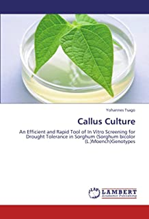 Callus Culture: An Efficient and Rapid Tool of In Vitro Screening for Drought Tolerance in Sorghum (Sorghum bicolor (L.)Moench)Genotypes