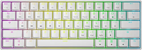 GK61 White Hot Swappable Mechanical Keyboard - 61 Keys Multi Color RGB Illuminated LED Backlit Wired Gaming Keyboard,...