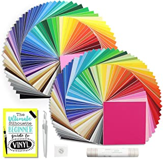 Oracal Vinyl Starter Kit - 129 Assorted Colors! 651 Glossy and 631 Matte, Silhouette CAMEO Vinyl Guide, Transfer Paper and Tools