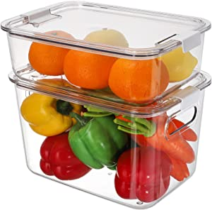 ZENFUN 2 Pack Refrigerator Organizer Bins, Clear Plastic Fridge Storage Containers with Lids, Stackable Fruit Vegetables Bin Box for Food, Snack, Pantry, Kitchen, Handle, 2 Sizes