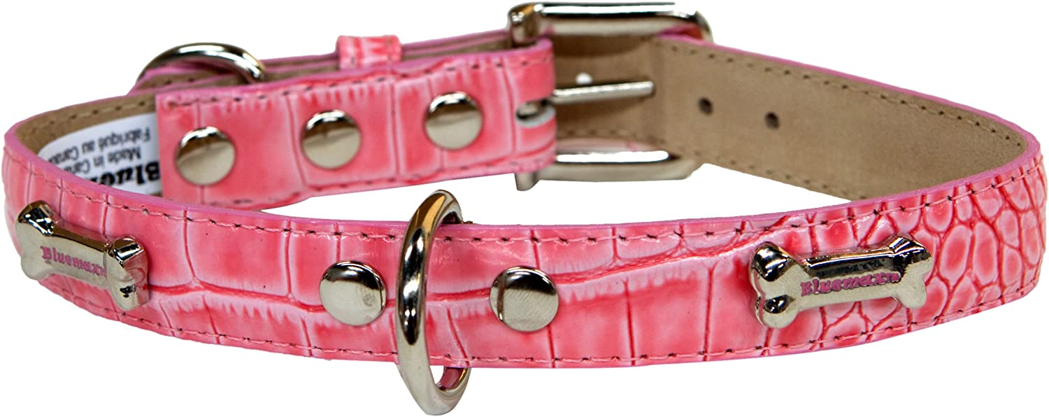 blueemax Genuine Leather Crocodile Cow Dog Collar with Bone Stud, 3 4Inch by 16Inch, Pink