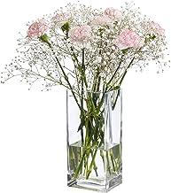 Amazon Com Square Vases For Wedding Table