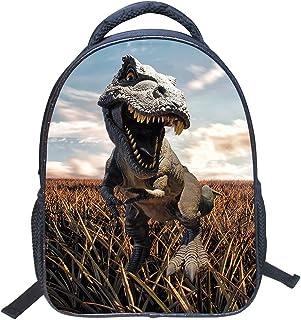 JIAN YA NA 3D Dinosaur School Bags Nylon Backpacks for Kindergarten Children Backpack Travel Rucksack Sports Shoulder Bags for Many Outdoor Activities (Dinosaur 1)