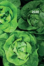 2020: Lettuce photography Petite Planner Calendar Organizer Daily Weekly Monthly Student for researching self sufficient living on 5 acres