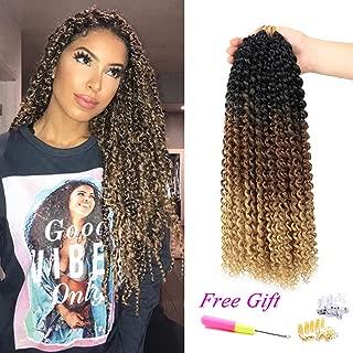 Passion Twist Hair Ombre Crochet Braids 18Inch 6Packs Water Wave Crochet Braids for Crochet Passion Twist Braiding Hair (Black Brown/Light Brown)