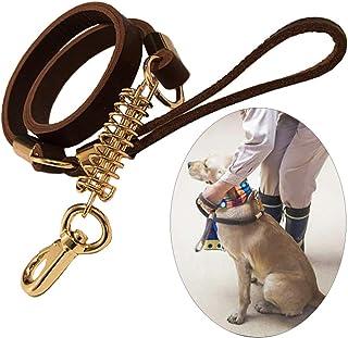 shanzhizui Correa de perro de cuero puro Cadena de perro de cuero Muelle amortiguador Cuerda de