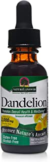 Nature's Answer Alcohol Free Dandelion Root, 1 Fluid Ounce