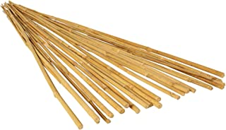 Hydrofarm HGBB6 6' Natural, Pack of 25 Bamboo Stake, 6 Foot, Tan