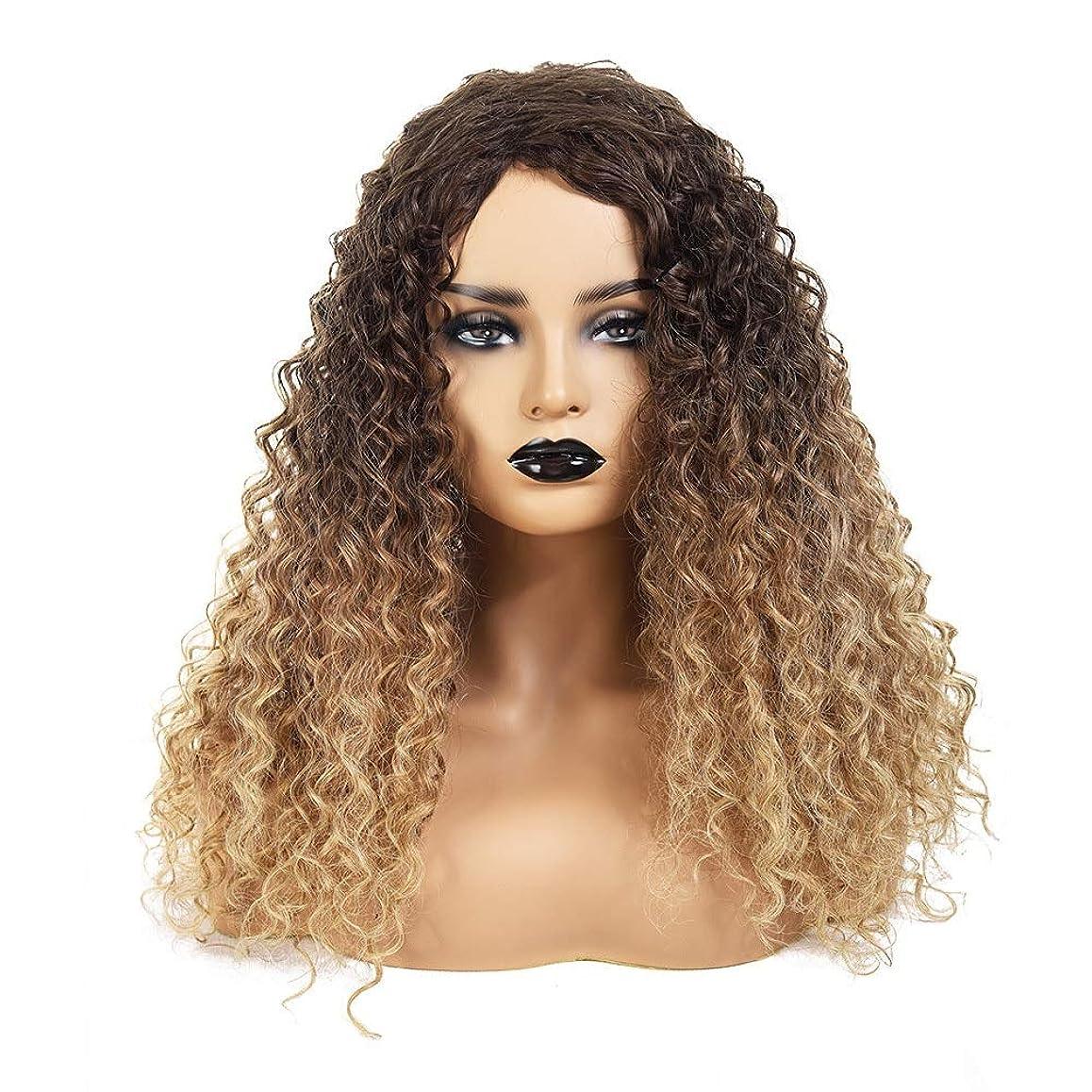 絶えずとして台風Yrattary 18インチアフロカーリーヘアブラウンルーツグラデーションブロンドの抵抗力のある髪の人工毛ウィッグウィッグ (Color : Blonde)