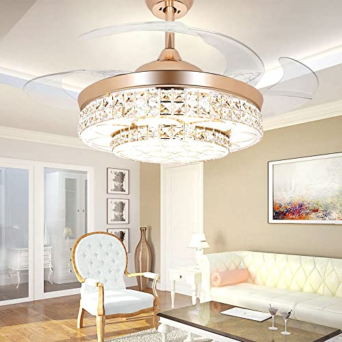 Elegant Ceiling Fans: Amazon.com