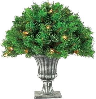 Greenfields Towo300150ac5 Vitoria Topiary, 24