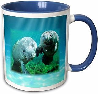 "3dRose Mug_39647_6\""2 Manatees Looking At You\"" Two Tone Blue Mug, 11 Oz, Multicolor"