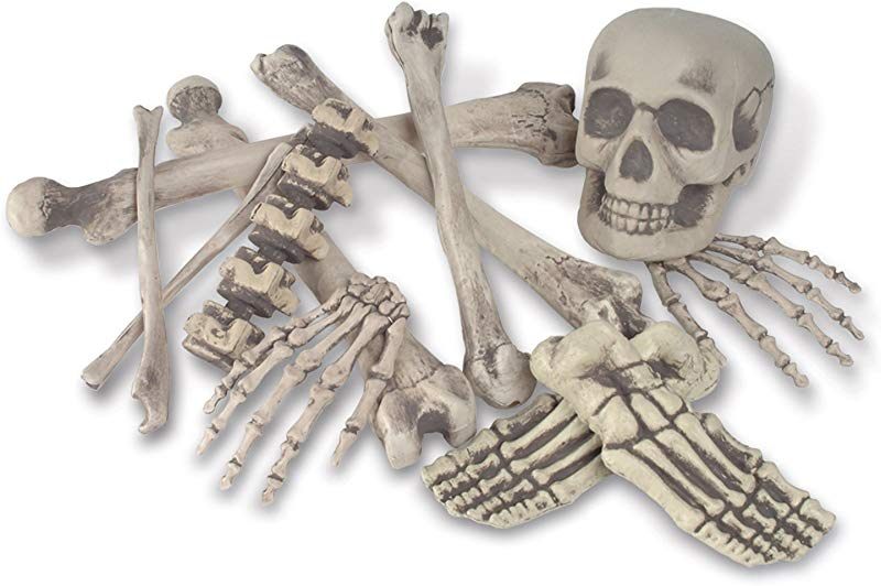 Skeleton Decoration Bone D Cor Bag Of Bones 6 Inches To 16 Inches 12 Piece Set