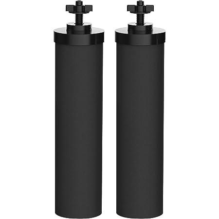 Waterdrop BB9-2 de Remplacement pour Eléments de Purification BB9-2 Black, Doulton Super Sterasyl et Propur Traveller, Nomad, King, Big Series (2 Pack)