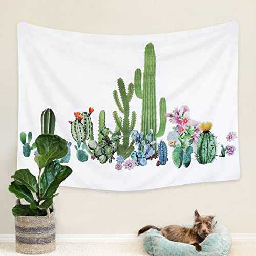 Cactus Room Decor: Amazon.com