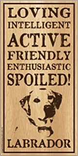 "Imagine This Labrador""Spoiled!"" Wood Sign"