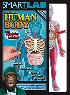 Best smart lab you explore it: human body model Reviews