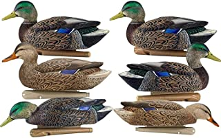 Avian-X Early Season Mallard Decoys 6 Pack