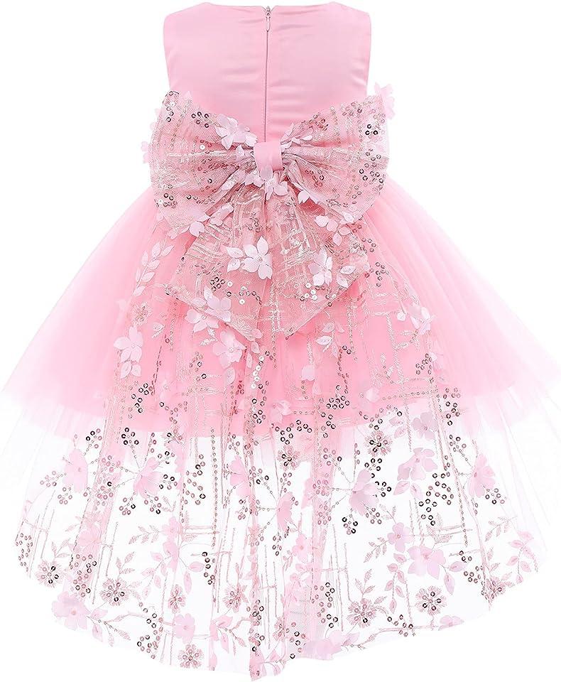 Kind Baby Mädchen Blume Spitzenkleid Prinzessin Ärmellos Bowknot Hi-Lo Party Tutu Festzug Ballkleid Hochzeit Geburtstag Taufkleid
