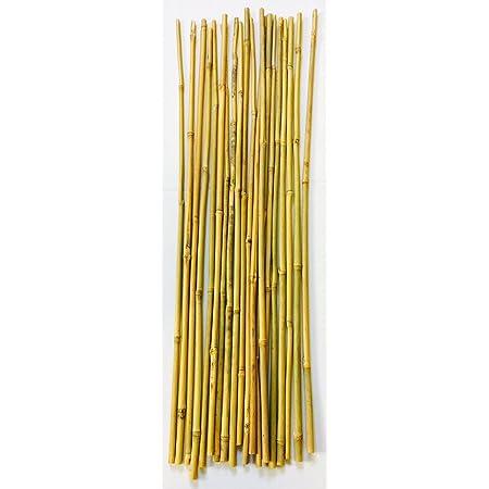 Mendi 20 Varillas de bambú / 70 cm - 75 cm / 6 a 10 mm diámetro/Tutor de Plantas, jardineria y Huerta