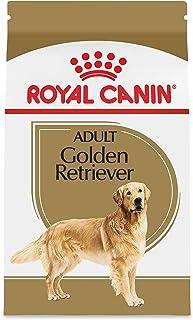 Royal Canin Adult Golden Retriever