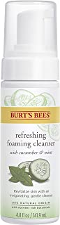 Burt's Bees Refreshing Foaming Face Cleanser and Natural Face Wash with Cucumber and Mint, 4.8 Fluid