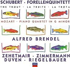 Best schubert piano quartet Reviews