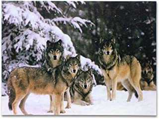 Wolf Pack LED Lighted Canvas Print Home Decor - Pack of Grey Wolves in a Snowy Winter Forest Scene - 16x12 Inch