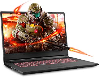 Sager NP6876 17.3 Inches Thin Bezel FHD Gaming Laptop, Intel Core i7-9750H, NVIDIA GTX 1660Ti 6GB DDR6, 32GB RAM, 500GB NVMe SSD + 1TB HDD, Windows 10 Home