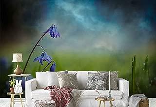 meadow bluebell wallpaper