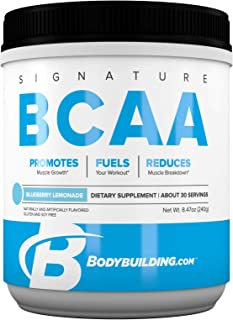 Bodybuilding Signature BCAA Powder | Essential Amino Acids | Nutrition Supplement | Promote Muscle Growth and Recovery | 30 Servings, Blueberry Lemonade