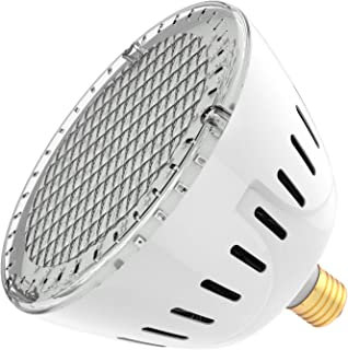 LAMPAOUS Inground LED Pool Lights Spa Lights Bulb Pure White Color (Pool Bulb, 12VAC)