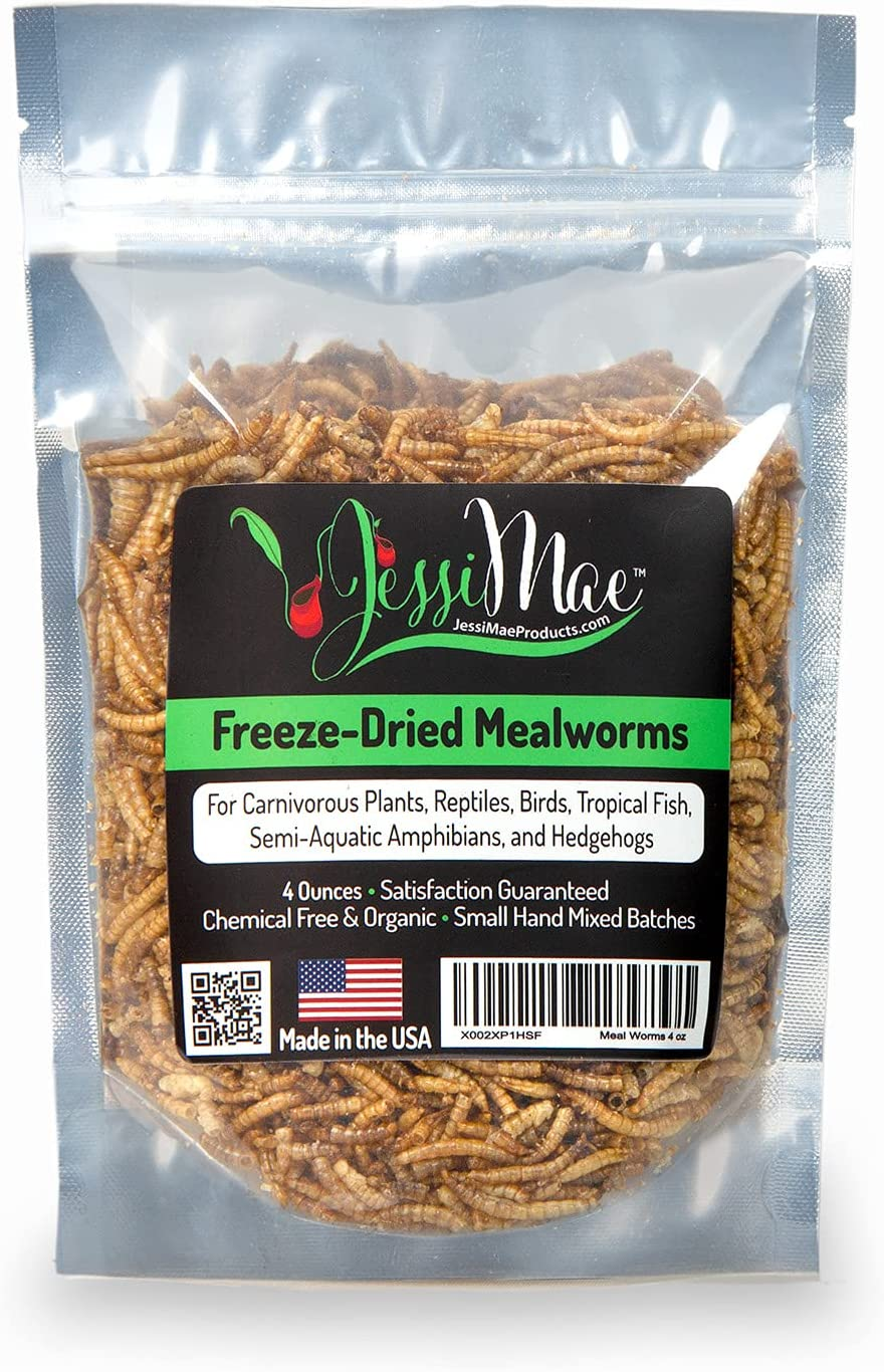Jessi Mae Freeze Dried Mealworms – 4 oz Natural Protein Meal Supplement for Chickens, Birds, Venus Fly Trap, Reptiles and Hedgehogs - Carnivorous Plant Food