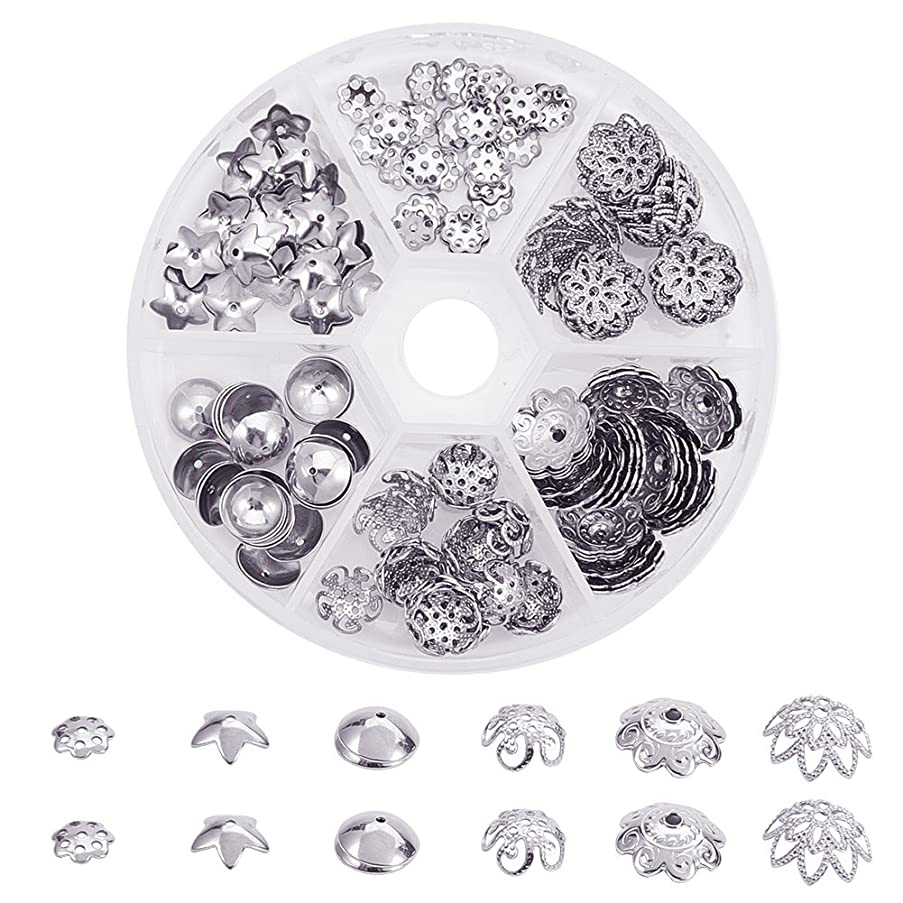 PandaHall Elite About 180 Pcs 304 Stainless Steel Flower Bead Caps 6 Styles Jewelry Making
