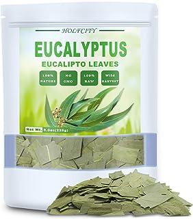 100% Natural Dried Eucalyptus Leaves, Eucalyptus Herbal Tea, Cut and Shifted, Bulk Bag (8 oz)