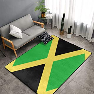Best area rugs jamaica Reviews