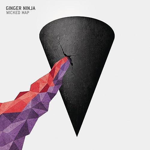 Crying Shame de Ginger Ninja en Amazon Music - Amazon.es